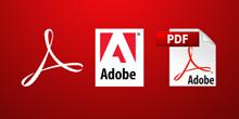 Peacock Quizzes reuires Adobe